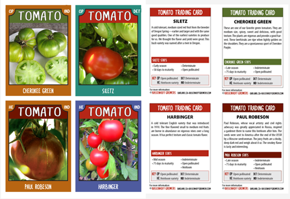 Tomato trading cards Series-2