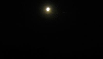 Moonshine reveals all