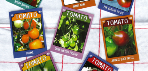 Tomato Trading Cards ~ Series No. 1