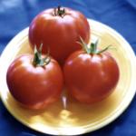 Nepal tomato